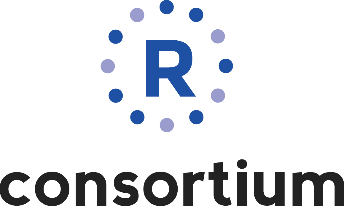 the r project for statistical computing romania team